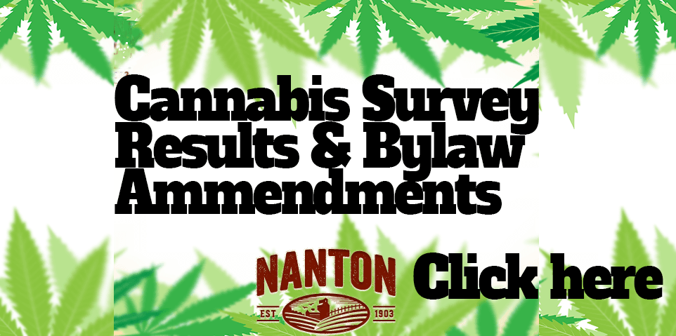 cannabis survey results