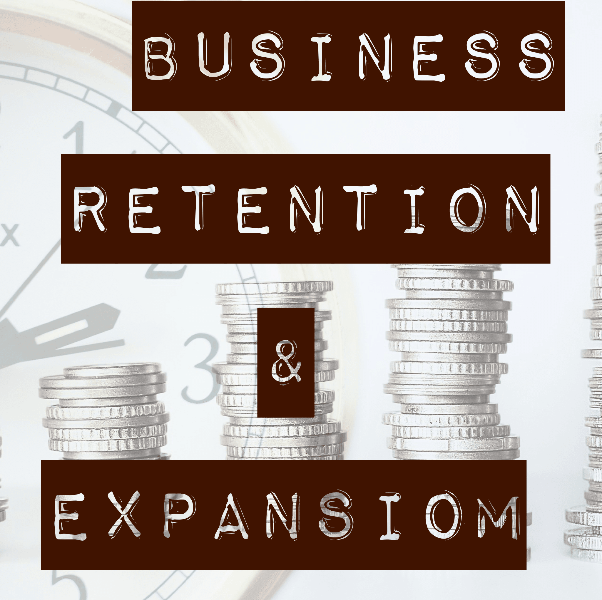 Business Retention and Expansion