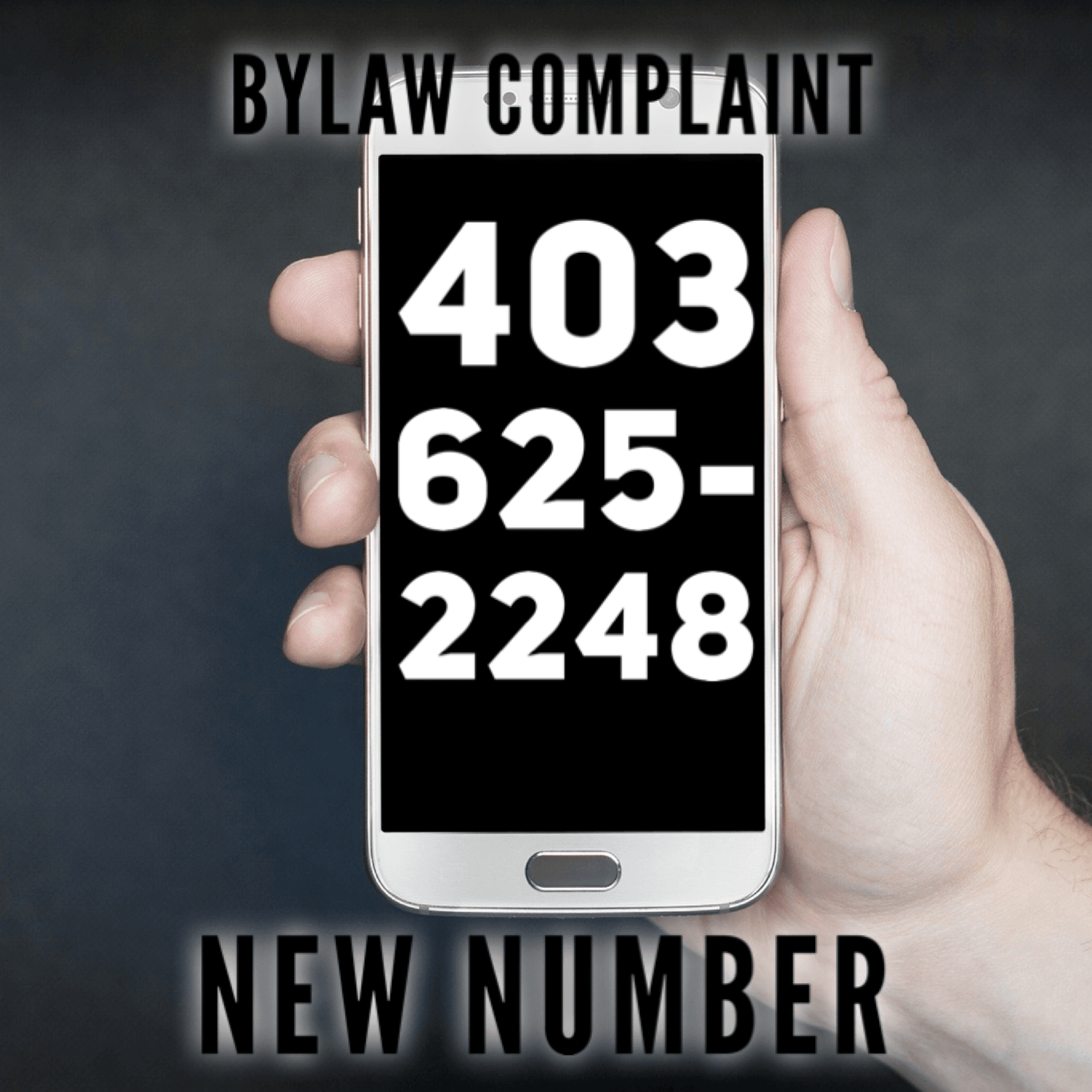 bylaw complaint new number
