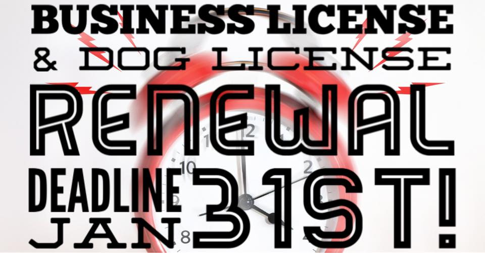business and dog license